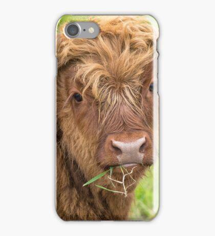 Highland Calf iPhone Case/Skin