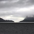 Dusk at Doubtfull sound, Fjiorland by EblePhilippe