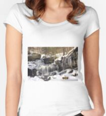 Icicles Decorate The R. B. Ricketts Waterfall Women's Fitted Scoop T-Shirt