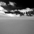 winter scene by neil harrison