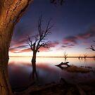 Barmera South Australia by Dene Wessling