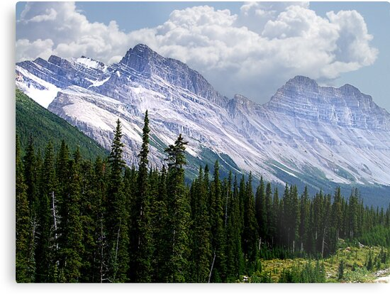 Introduction to Banff by George Cousins