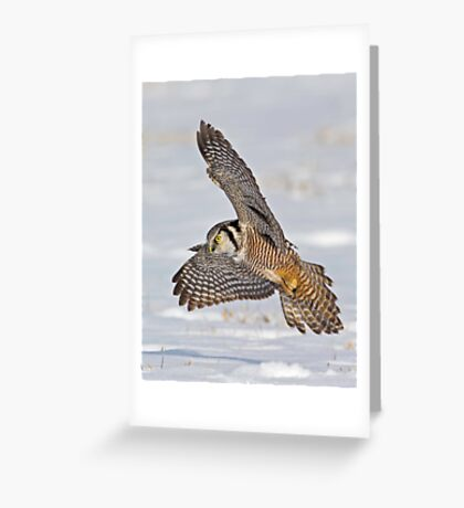 Swoop, there it is!  Greeting Card