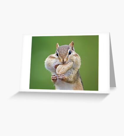 One more for the Road ! Greeting Card
