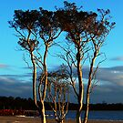 Sunset At Lake Poorrarecup by Eve Parry