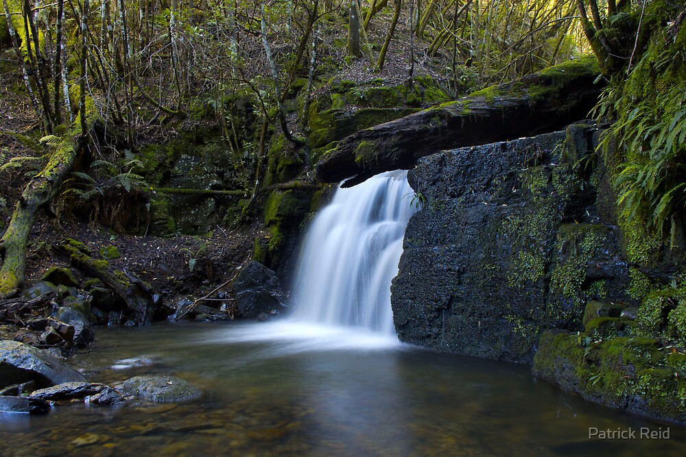 Strickland Ave Falls #2 by Patrick Reid
