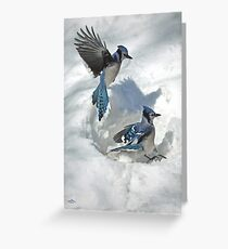 Those Were The Jays Greeting Card