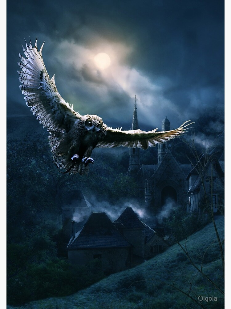The Night of the Owl  by Olgola