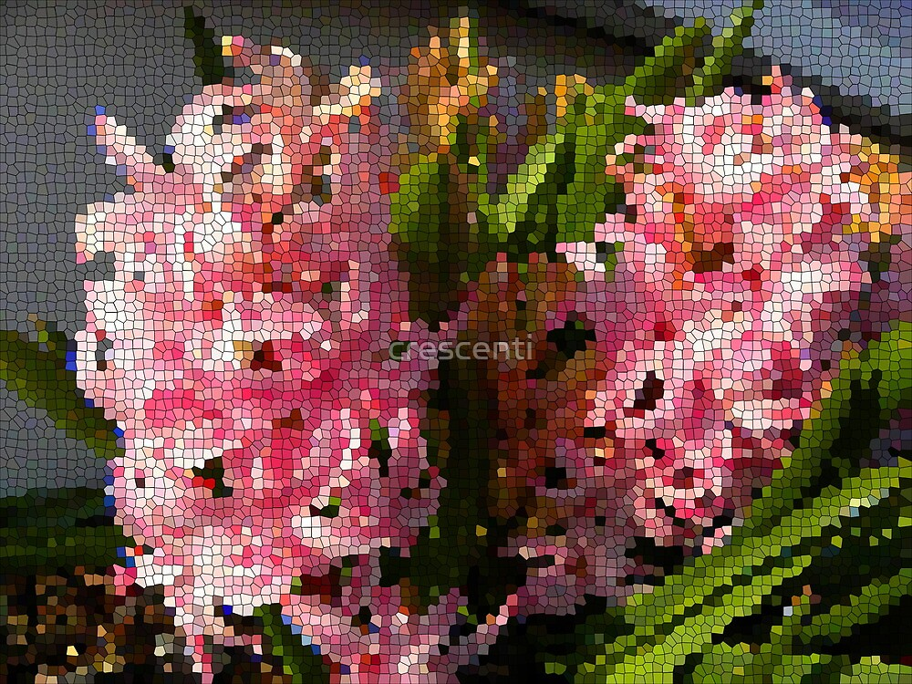 stained glass pink flower 029 1 by crescenti