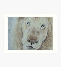 Casper the White Lion Art Print