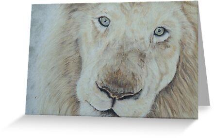 Casper the White Lion by Pamela Stirling