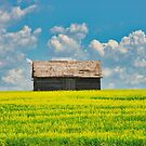 Prairie Barn by IanMcGregor