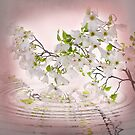Sweet Apple Blossoms by Trudy Wilkerson