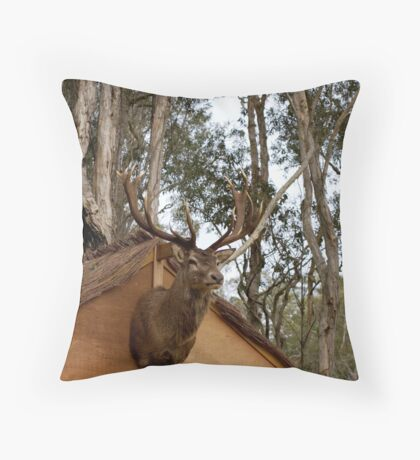 untitled #141 Throw Pillow