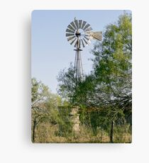 Hawk Perched on Windmill Canvas Print