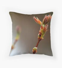 A beauty or bust? Throw Pillow
