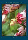 Flowers - Ho'oponopono 02 by McAllister