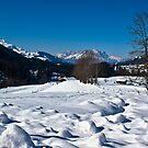 Snowscape 1 by Richard Downes