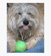Bailey's Ball Photographic Print