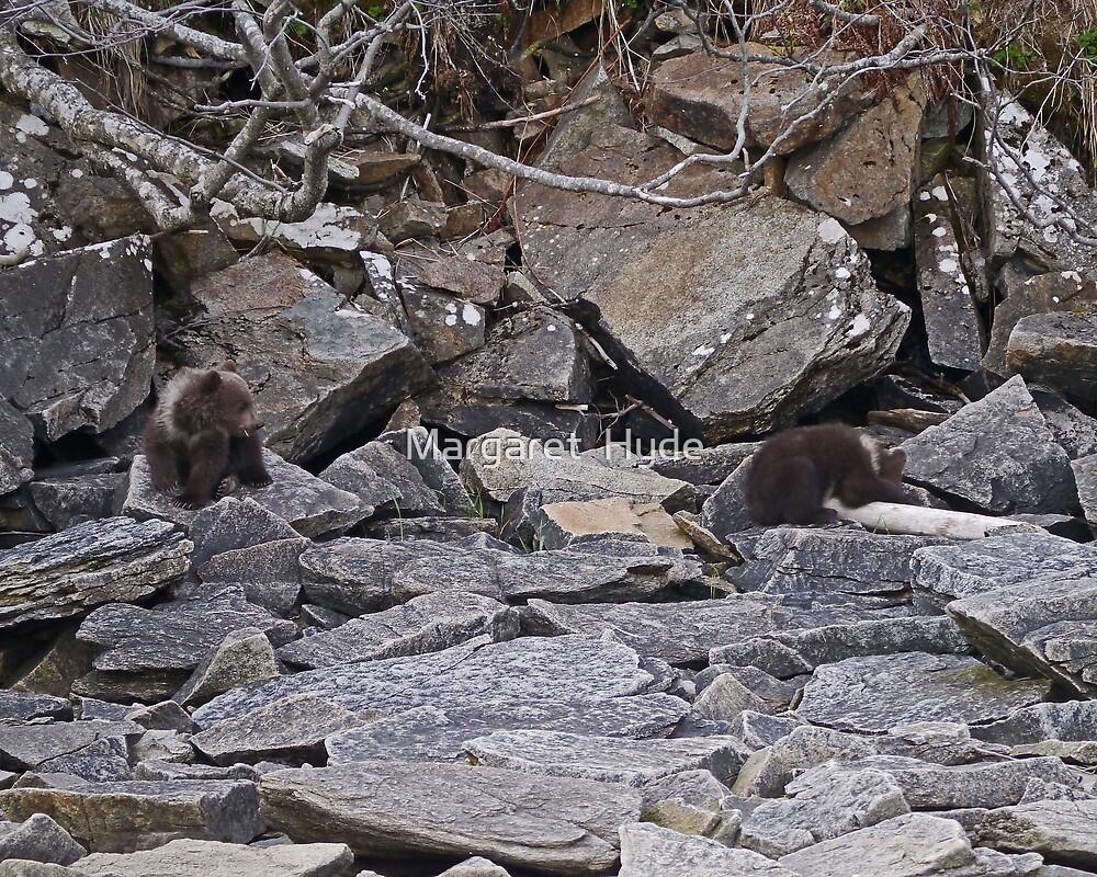 bear cubs, Katmai, Alaska, USA by Margaret  Hyde