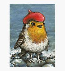 Master robin at the seashore Photographic Print