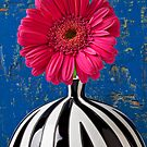 Dark Pink Mum In Striped Vase by Garry Gay