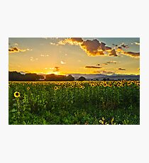 A Summer Dusk Photographic Print