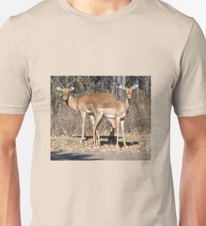 Brown beauties T-Shirt