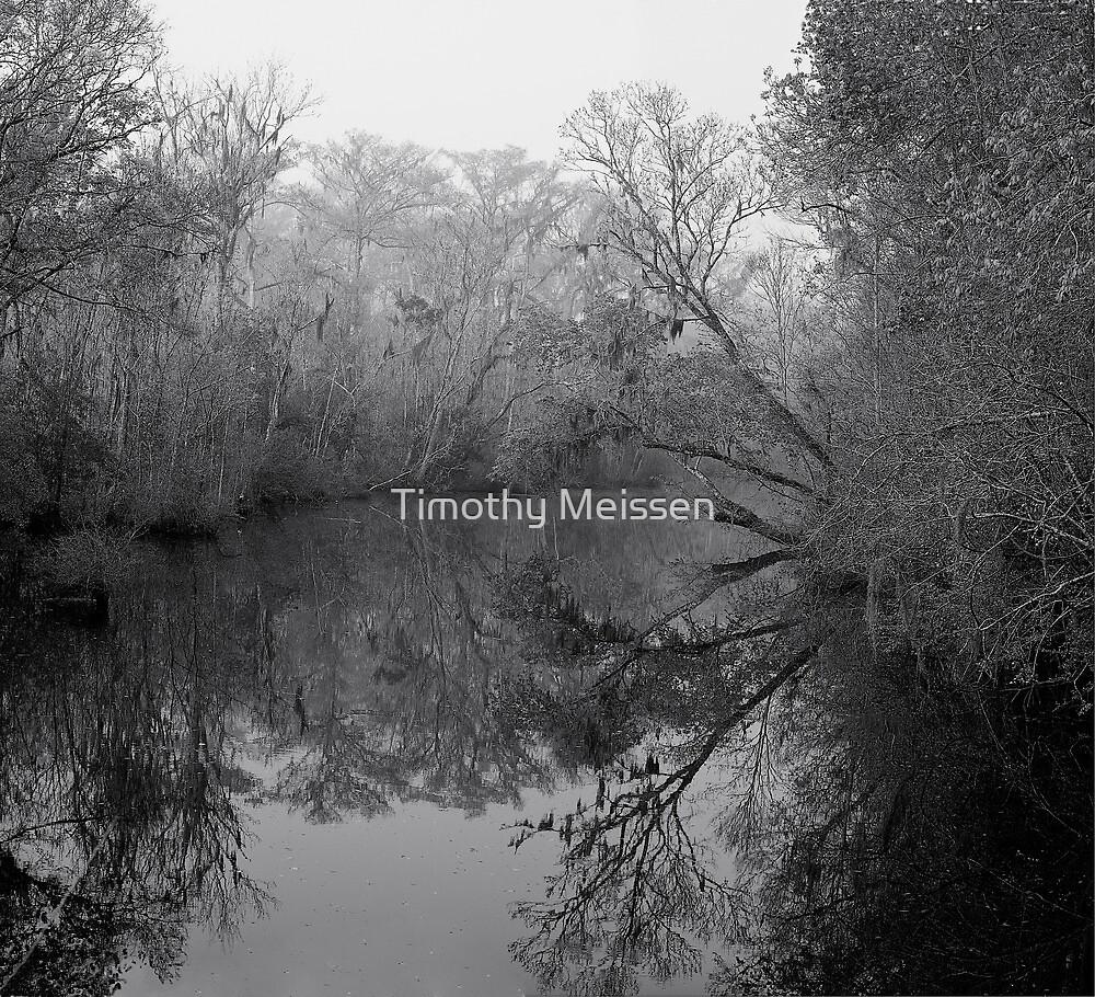 Foggy Morning Creekside - B&W by Timothy Meissen