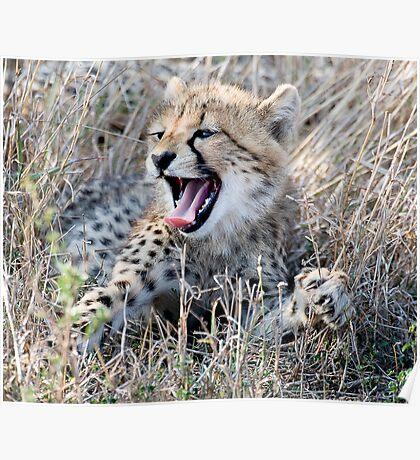 Yawn ! Poster