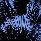 Silhouette on Blue by Margaret Stevens
