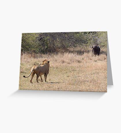 Lion Meets Buffalo Greeting Card
