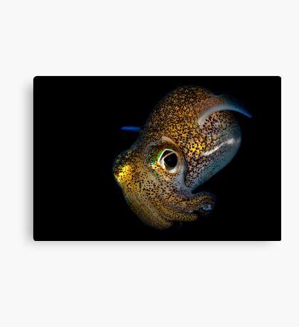 Bobtail Squid Canvas Print