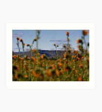 Upper Table Rock, Rogue Valley Art Print