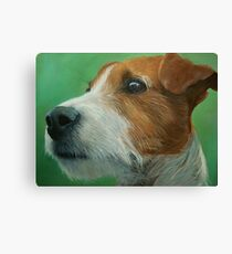 House trained Canvas Print