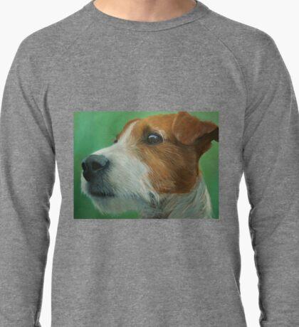 House trained Lightweight Sweatshirt