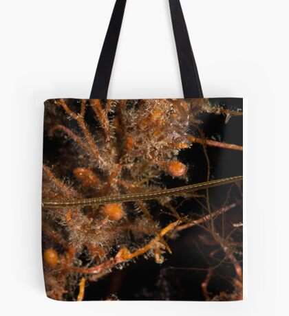 Wide Bodied Pipefish Tote Bag