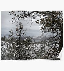 Cook Peak 2011 Snowy View Lake and Landscape Poster