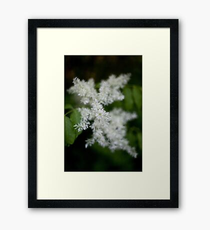 Whiteness Framed Print