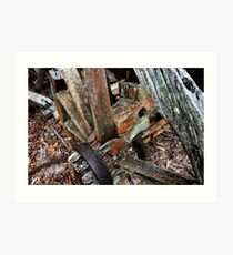 Decaying Wagon Wheel -  Hill End NSW Art Print