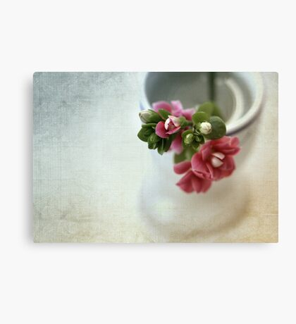 For me... Canvas Print