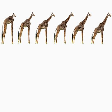 Giraffe Evolution by nicksala