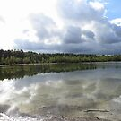 Clouds and Lake by ienemien