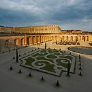 Palace of Versailles by Aleksandar Topalovic