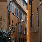 An Alley in Rome by Gayle Dolinger