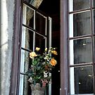 Flowers in the Window by Gayle Dolinger
