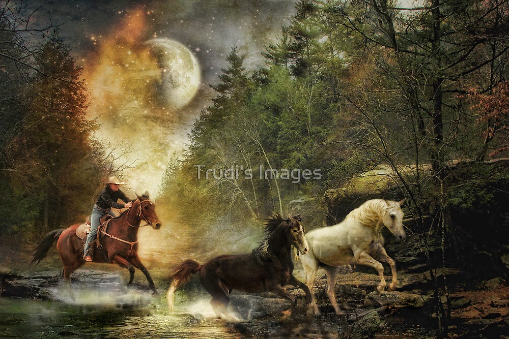 Running to Midnight by Trudi's Images