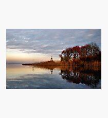 golden reeds.. Photographic Print