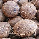 Coconuts by Mario  Vazquez