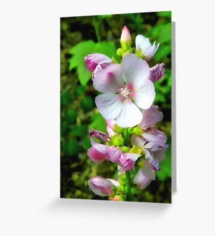 Natural Bouquet Greeting Card